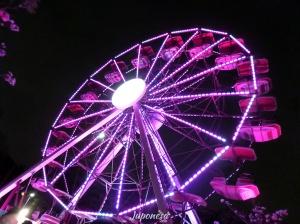 A Roda Gigante pela Vida está localizada na Praça de Eventos do Parque Ibirapuera de 2ª a 6ª das 14 às 20 horas e aos sábados e domingos, das 10 às 22 horas.