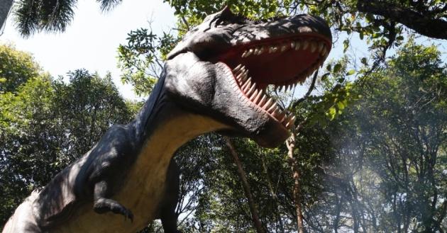 """O Tiranossauro (Tyrannosaurus rex) está entre as espécies mais conhecidas de dinossauro e é uma das estrelas da exposição interativa """"O Mundo dos Dinossauros"""", no Zoológico de São Paulo."""